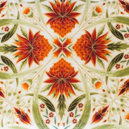 Melba Australis Kaleidoscope Cream-Orange
