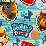 Paw Patrol - Boys - Light Blue with Coin