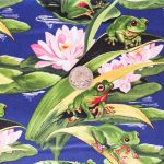 Frogs on Lilypads with coin