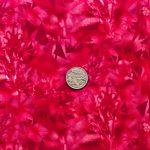 Alberta Penstemon Dark - Radish with coin