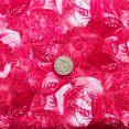 False Hellebore Dark - Tomato with coin