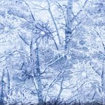 Snowy Branches - Pewter