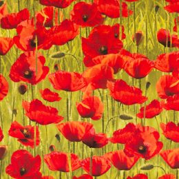 Poppies - Green