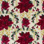 Poinsettias - Ivory