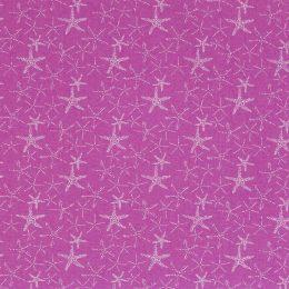 Starfish - Bubblegum