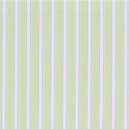 Susy Stripe - Kiwi